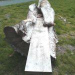 A bench at Llyn Efyrnwy